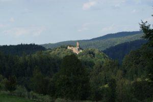 Rezerwat Przyrody Góra Choina