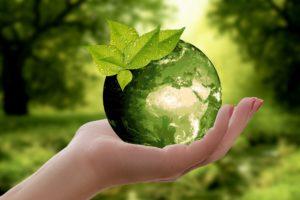 Dzień Ziemi świętujmy cały rok – bądźmy Eko!